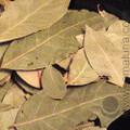 Laurel Leaves (Bay Leaves)
