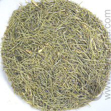 Pinyon Pine Needles (Piñon, Pinion)