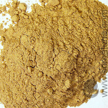 Echinacea Angustifolia, organic root powder