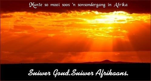 Goue munte op goudwoud.co.za