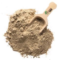 Chinese Mushroom Powder