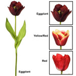 Real Touch PEER Tulip