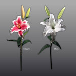 Real Touch (Floramatique) Casablanca/Rubrum Lily