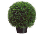 20-Inch Diameter Cedar Ball Topiary, in PVC Container