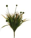 Wild Grass with 9 Pods