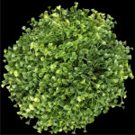 "9.5"" Diameter Azura Leaf Ball"