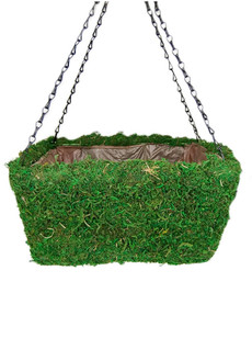 Woven Square Moss Planter by SuperMoss