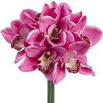 Real Touch Cymbidium Orchid