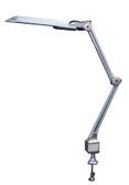 EnergyEfficient Salon Desk Lamp with Bulb 13W Silver