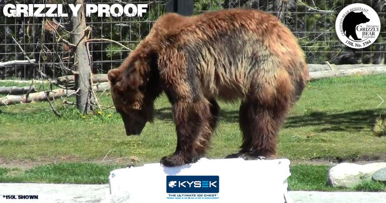 100 L KYSEK Cooler with bear on Ice Chest