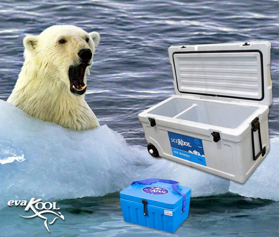 icekool-banner.png