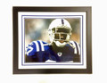 "Reggie Wayne ""The Scream"" Framed 20 x 24"