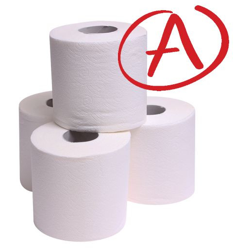 Double Roll A Grade Quality - 2ply 500 Sheets per Roll - 48 Rolls