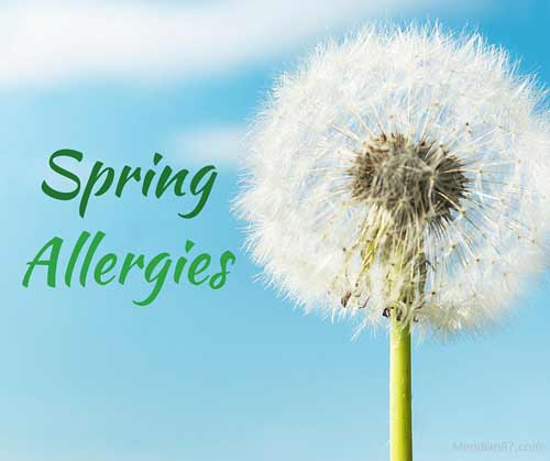 Arm Yourself Against Allergies