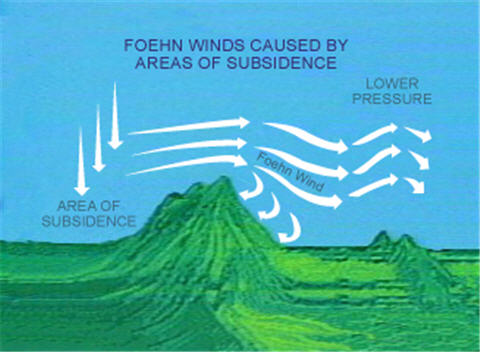 Evil Winds: Can Positive Ions Increase the Rate of Crime?