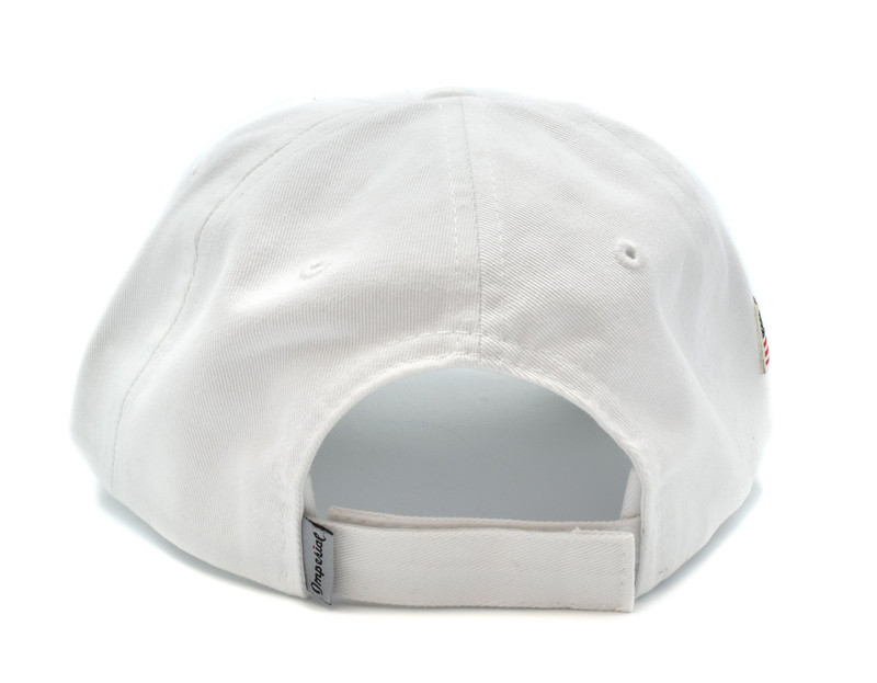 IonLoop Logo White Small Fit Hat (back)