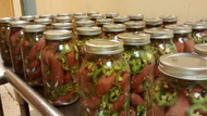 1/2 Gallon Glass Jar Nowicki's Pickled All Beef Sausage with Jalapeno Peppers - Spicy not hot.