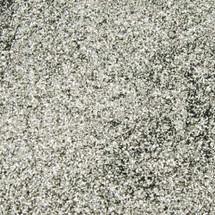 Silver .008 Glitter