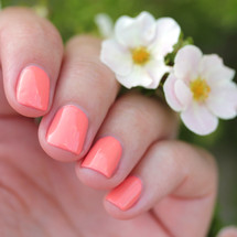 what in carnation? by Girly Bits. Small batch limited release. Swatches by Streets Ahead Style