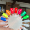 LE Neon Creme swatch wheel