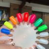 LE Neon Creme swatch wheel