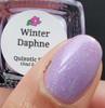Winter Daphne by Quixotic