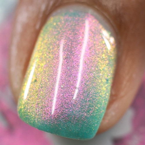 Song Of The Siren by Nailed It Hawaii