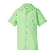 Boys School Shirts  - Green