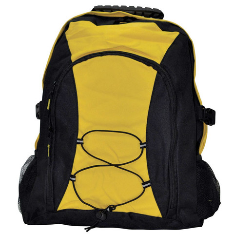 SMARTS | padded backpack with bungee cord | black/gold
