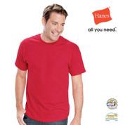 BASIC blank 100% cotton tshirts | unisex | Hanes
