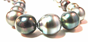 silver-black-tahitian-loose pearls. PKG Deal Incls Stringing, Clasp, Appraisal