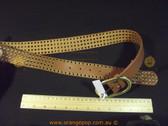 Studded Tan brown Women's Ladies Fashion Belt