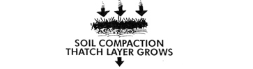 Soil compaction (Thatch layer grows)