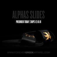 ALPHAS SLIDES - SHIPS 2.8.19