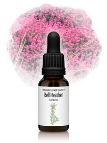 Bell Heather Flower Essence 15ml drops