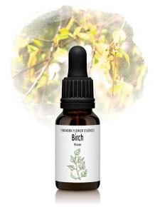Birch Flower Essence 15ml drops