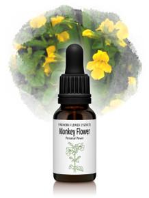 Monkey Flower Essence 15ml drops
