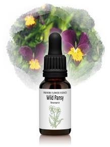 Wild Pansy Flower Essence 15ml drops