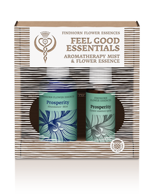 Prosperity Duo - Essence & Mist