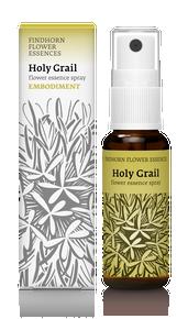 Holy Grail 25ml spray