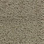 Earthy - Bliss Carpet