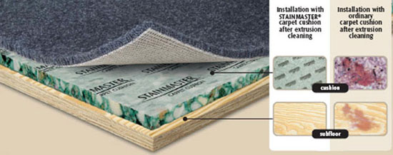 Stainmaster Carpet Cushion Buy Stainmaster Carpet Custion