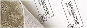 stainmaster-carpet-smaller.jpg