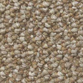 Countryside Indoor Outdoor Carpet