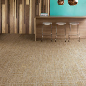 "Shaw Entwine Carpet Tile 24"" x 24"""