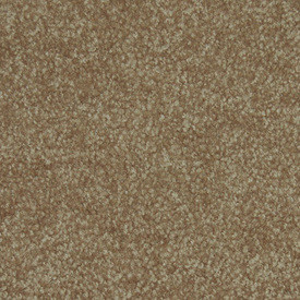 Workhorse Textured Plush Carpet Textured Plush Carpet
