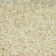 Boardwalk I 984 Sand In-Stock Textured Plush Carpet