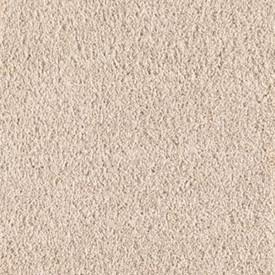 Intelligent Style Mohawk Residential Carpet
