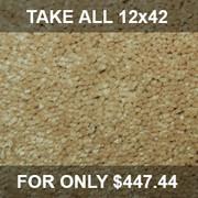 SP 42 02 Peanut Glaze Residential Carpet