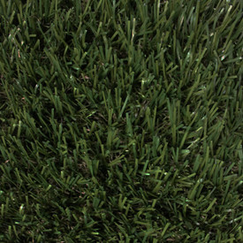 Perfect Lawn - Turf Carpet - Landscape Turf - 15 ft. width GrassTex Turf Carpet